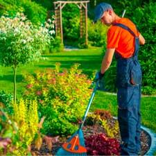 jardineria-obrasbox